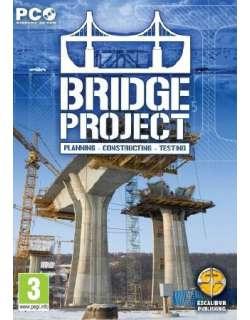Bridge Project 2013