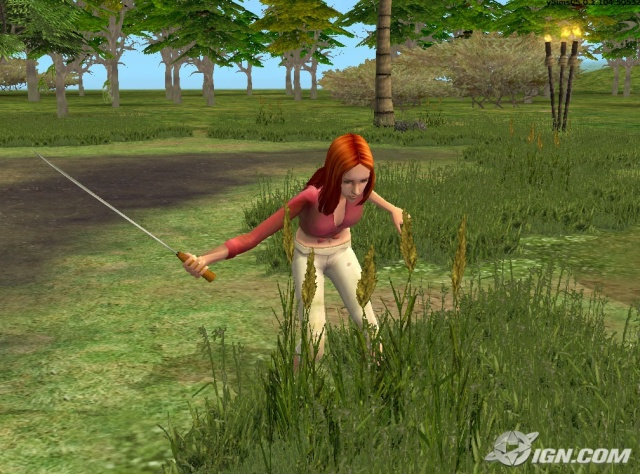 http://www.p30gamers.com/image/userfiles/the-sims-2-castaway-stories-20080221093413704_640w.jpg